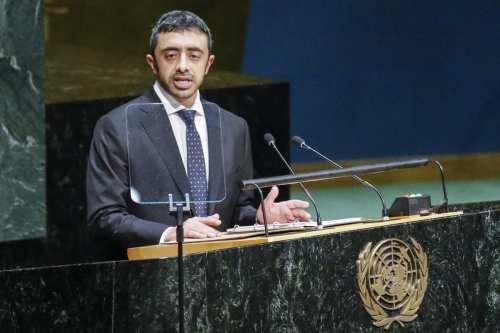 Los Emiratos Árabes Unidos anuncian su candidatura al Consejo de…