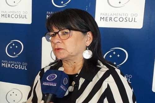 La diputada pro-palestina que quiere llevar a Bolsonaro a los…