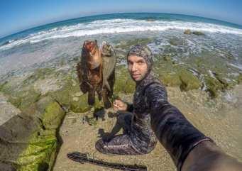 El fotógrafo de MEMO Mohammed Asad documenta la vida marina de Gaza, en Gaza el 18 de octubre de 2020 [Mohammed Asad/Middle East Monitor]