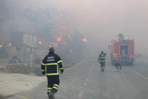 Al menos 10 heridos en los incendios forestales del sur…