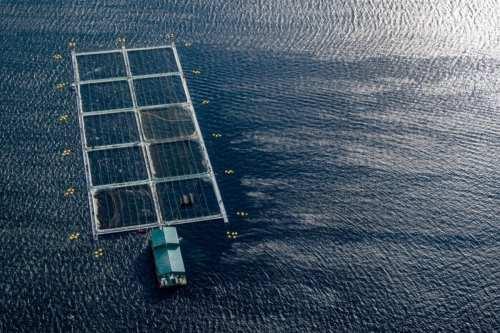Qatar quiere luchar contra el cambio climático desarrollando su sector…