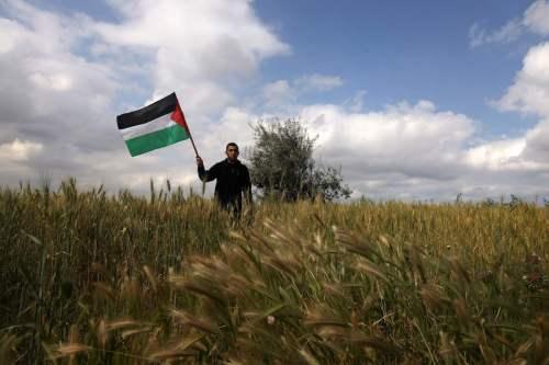 Palestina: El sector agrícola pierde 204 millones de dólares por…