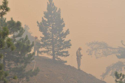 Turquía: todos los incendios forestales bajo control