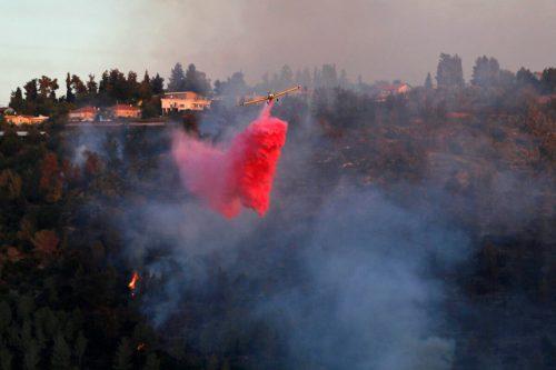 Israel pide ayuda internacional para luchar contra los incendios forestales…
