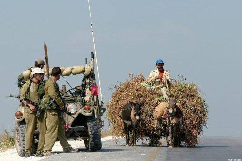 Israel arrasa tierras palestinas para dejar paso a una carretera…