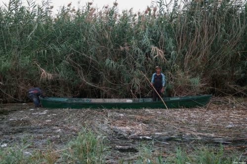 Irak sufre una pérdida del 50% de la superficie agrícola…