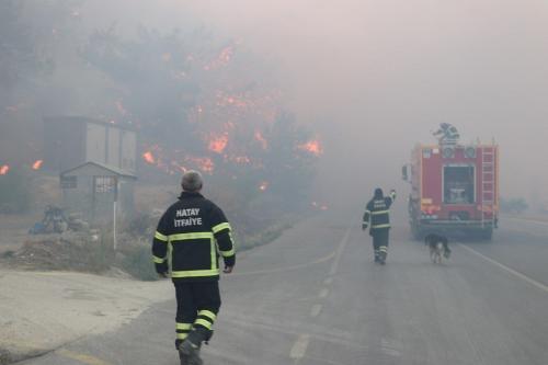 Bombeiros combatem um incêndio em terras florestais, nos distritos de Belen, Arsuz e Iskenderun, na província de Hatay, Turquia, 9 de outubro de 2020 [Salin Tas/Agência Anadolu]