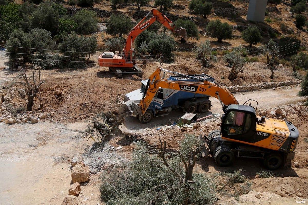 Escavadeiras israelenses arrancam oliveiras palestinas. Em 15 de abril de 2016 [Agência Anadolu]