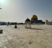 Estudiosos do Iêmen pedem rejeição das tentativas de restringir a soberania muçulmana sobre Jerusalém