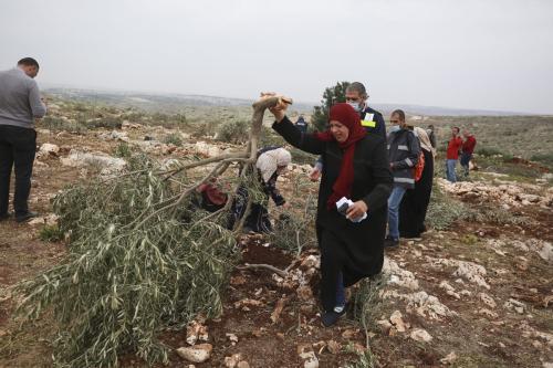 Palestinos plantam mudas de oliveiras após ataque de colonos israelenese, em Deir Ballut, Cisjordânia ocupada, 13 de janeiro de 2021 [Issam Rimawi/Agência Anadolu]