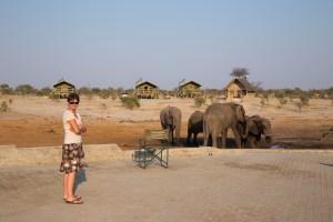 Auf dem Elephant-Sands-Camp kommen wir den Dickhäutern erneut sehr nahe.