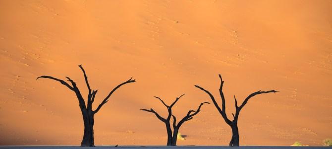 Namibia – wie aus dem Bilderbuch