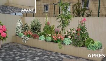 Choisir Des Plantes Vivaces Pour Une Jardiniere
