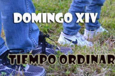 Domingo XIV.