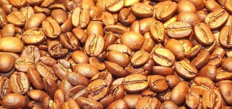 semilla suesa