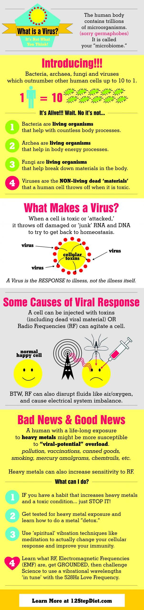 virus viral infographic
