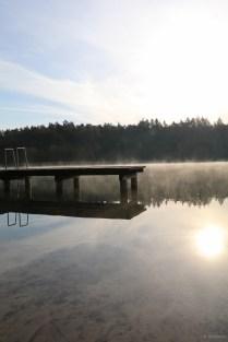 naturfotografie see im nebel