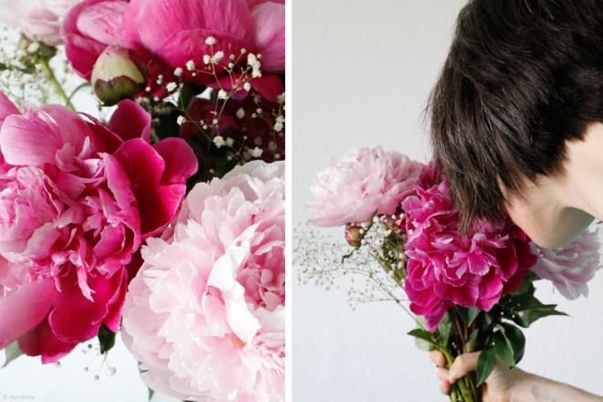 Fotoworkshop Blumen Makrofotografie