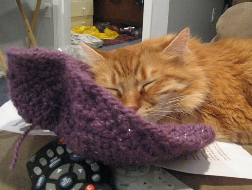 Henry, my cat, snuggling with handknitted cowl