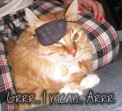 Grrr... I mean Arrr... I'm I pirate