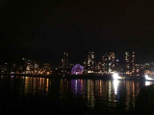 English Bay with festive lights in the willow tree