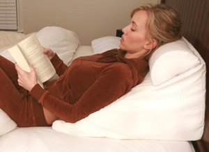 Reading Wedge Pillow from CSN Stores