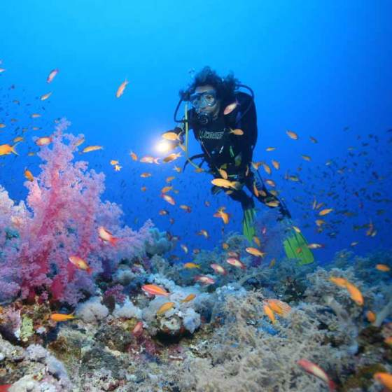 Activités nautiques, Equateur Lodge Mono 500