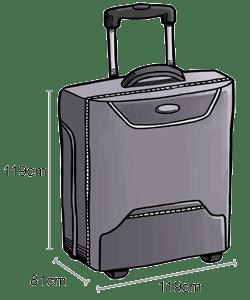 baggage-checked-baggage_14