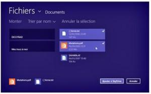Cliquez sur les fichiers à envoyer vers Skydrive