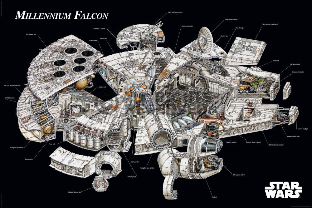 Coupe du Faucon Millenium
