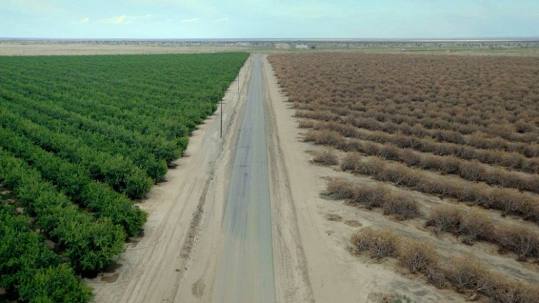 Water & Power: A California Heist explains how corporate greed is as much responsible for California's severe water drought as Mother Nature