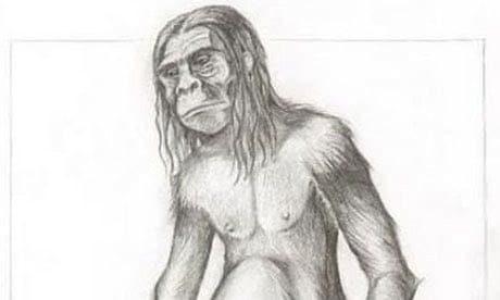 An artist's impression of Orang Pendek