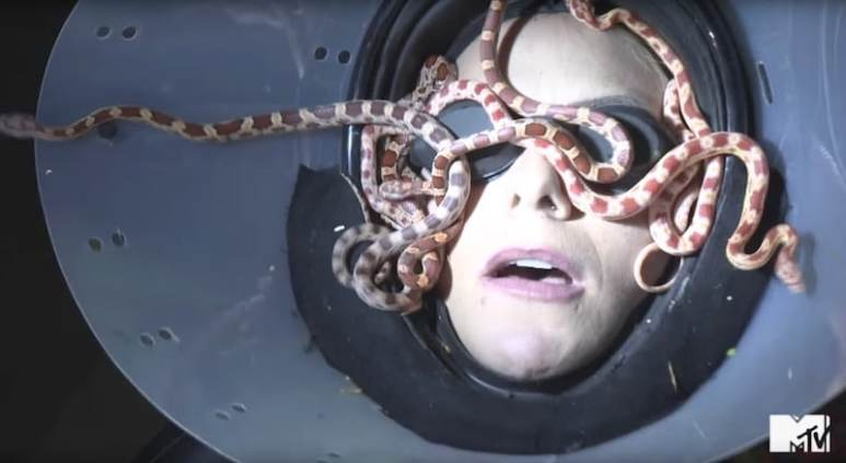 A contestant with snakes on her face on MTV's Fear Factor