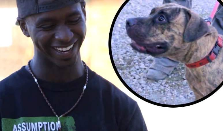 Darius grinning and an inset of the pit bull he helps train