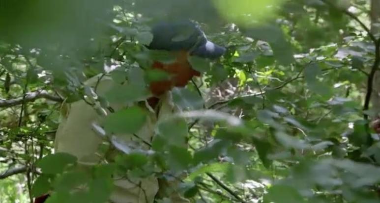Gary Drayton in undergrowth