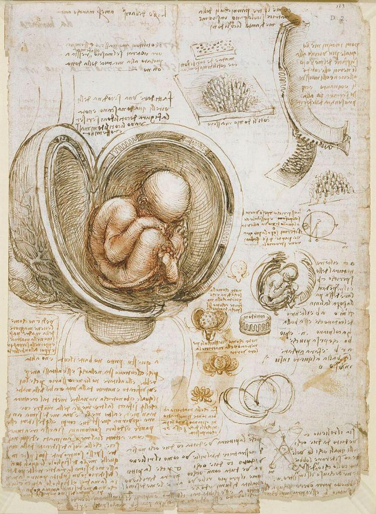 Leonardo's work was really groundbreaking