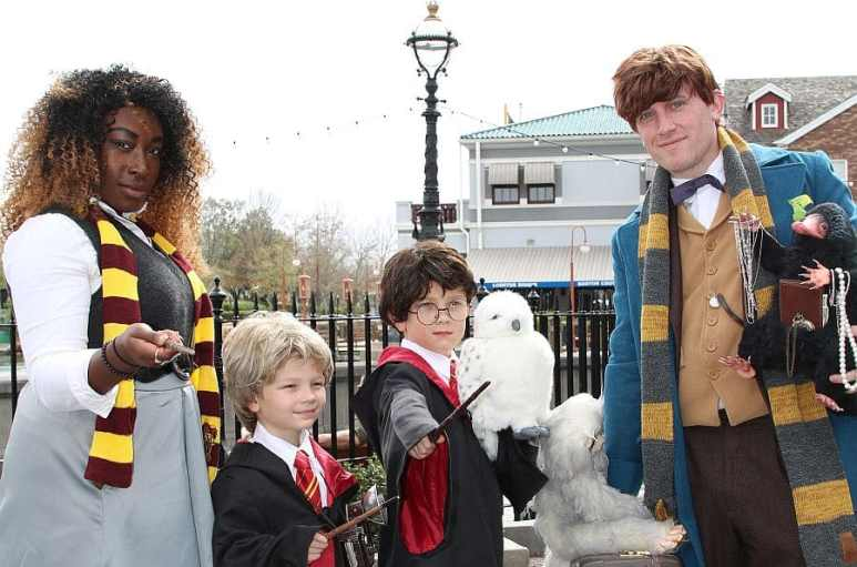 Which scarf do you wear? Time to pick a House and ride with Harry!