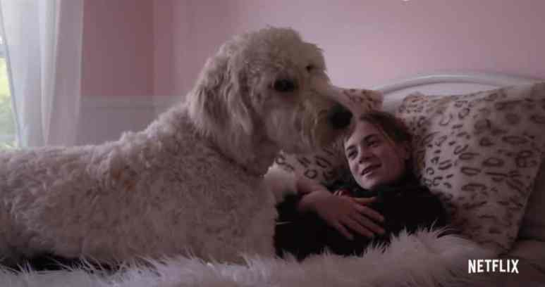 The Kid with a Dog, segment shows how dogs help children with disabilities. Pic credit: Netflix