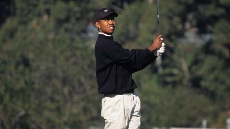 How much did Tiger win today?