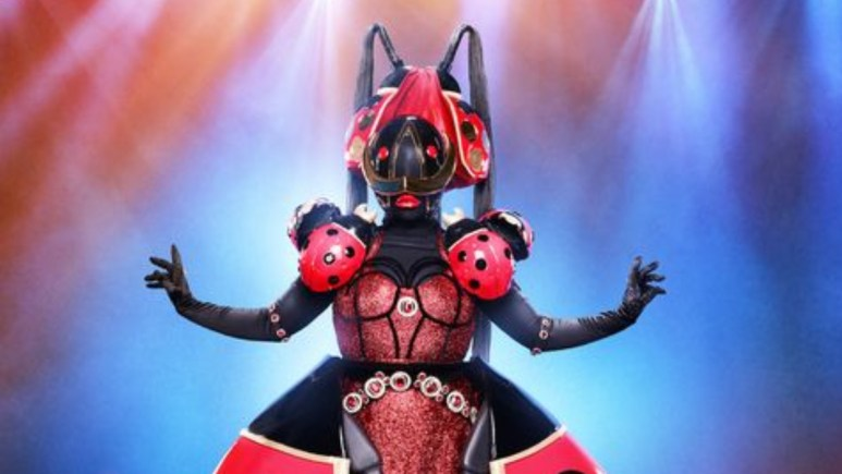 The Lady Bug on The Masked Singer
