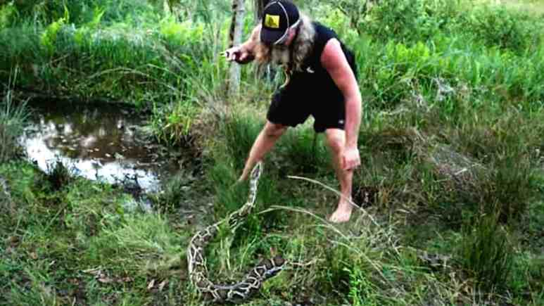 One of the attack strikes as Dusty is dancing with a big python who will not go easily. Pic credit: Discovery.