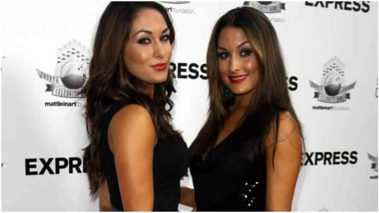 Both Bella Twins make pregnancy announcement at the same time