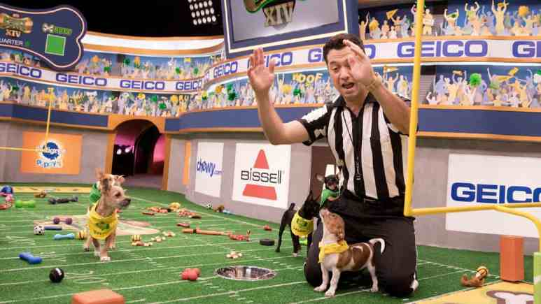 Dan Schachner is our MVP and his work with Animal Planet's Puppy Bowl continues on. Pic credit: Animal Planet/Damian Strohmeyer