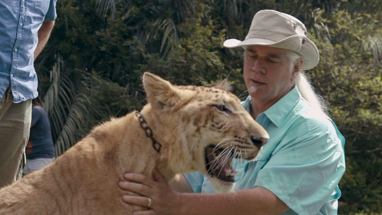 Doc Antle touches the chest of one of his tigers