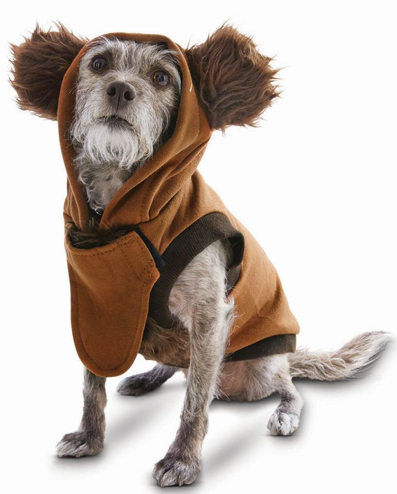 Ewok dog apparel