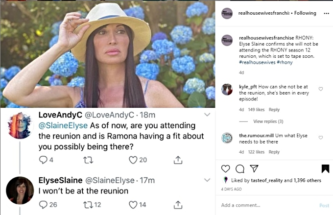 Elyse won't be at the RHONY reunion