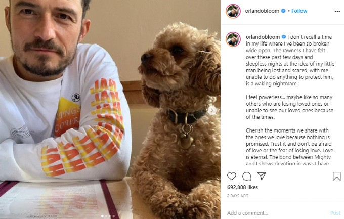 Bloom appeals for prayers for his dog on Instagram