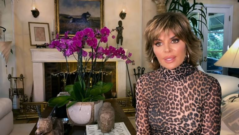 Lisa Rinna shares her views on Denise's claims