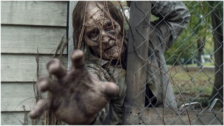 A walker that appeared in Episode 22 of AMC's The Walking Dead Season 10