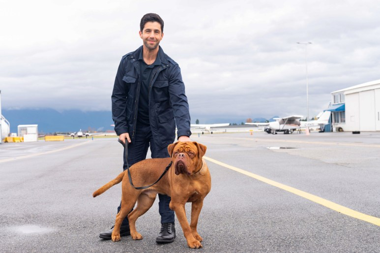 Josh Peck with a dog